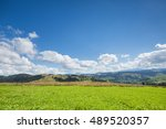 green meadow  mountain and blue ... | Shutterstock . vector #489520357