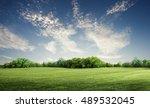 green grass field in big garden | Shutterstock . vector #489532045
