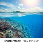 coral reef in the tropical sea... | Shutterstock . vector #489544819