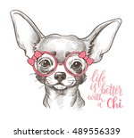 Girl Chihuahua Illustration...