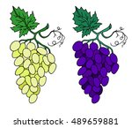 Grapes On White Background...