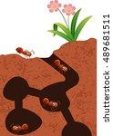 Cartoon Ants Colony