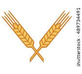 crossed ears of wheat  barley... | Shutterstock .eps vector #489734491