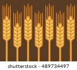 field of wheat  barley or rye... | Shutterstock .eps vector #489734497
