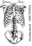 skeleton in style dot work | Shutterstock .eps vector #489735901