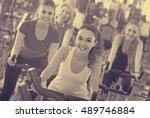 brunette smiling girl and other ... | Shutterstock . vector #489746884