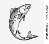 jumping salmon fish. hand drawn ... | Shutterstock .eps vector #489762034