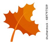 autumn leave icon in cartoon... | Shutterstock .eps vector #489797509