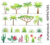 different types of tropical... | Shutterstock .eps vector #489967681