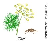 twig of fresh dill with seeds.... | Shutterstock .eps vector #490001344