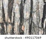 Plank Background 2