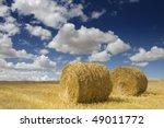 two golden hay bales in the... | Shutterstock . vector #49011772