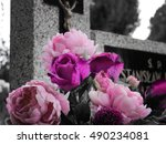 Pink Flowers On The Grave...