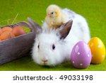 Chicken  Bunny Rabbit And...