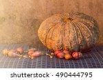 still life   pumpkin  shallots  ... | Shutterstock . vector #490444795