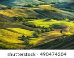 Tuscany  Rolling Hills On Misty ...