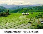 the vast rice fields on the... | Shutterstock . vector #490575685