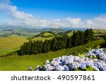 the volcanic hills on sao... | Shutterstock . vector #490597861