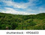 summer landscape with a green... | Shutterstock . vector #4906603