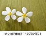 Two White Frangipani Flower On...