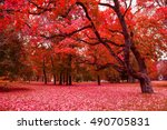 Fantasy Forest. Image Has A...