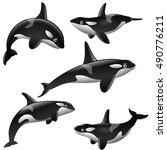 set of cartoon killer whales... | Shutterstock .eps vector #490776211