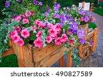 flowerbed with purple petunias | Shutterstock . vector #490827589