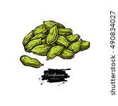 cardamom seed heap vector hand...   Shutterstock .eps vector #490834027
