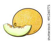 ripe and juicy yellow melon ... | Shutterstock .eps vector #491260771