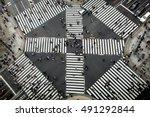 crosswalk | Shutterstock . vector #491292844