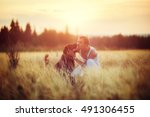 owner and dog labrador in field ... | Shutterstock . vector #491306455