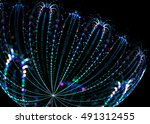 fractal shining   flower    ...   Shutterstock . vector #491312455