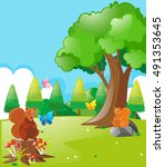 squirrels and butterflies in... | Shutterstock .eps vector #491353645