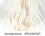 Close Up Of Gills Of A Mushroo...