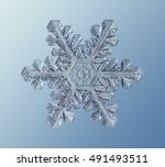 Real Crystal Snowflake