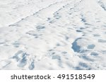 snow texture on ground in the... | Shutterstock . vector #491518549