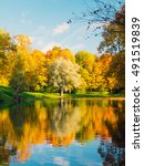 Stock photo colorful golden and yellow trees and pond in the autumn season in tsarskoe selo pushkin russia 491519839