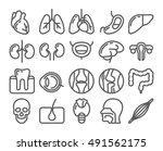 human organs line icon set | Shutterstock .eps vector #491562175