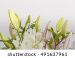 white and pink lily flowers...   Shutterstock . vector #491637961