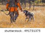 Swedish Moosehound In The Fall...