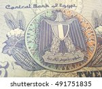 egyptian pound  close up of... | Shutterstock . vector #491751835
