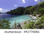 landscape of tropical island.... | Shutterstock . vector #491770081