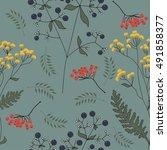 herbal with berries | Shutterstock .eps vector #491858377