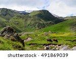 Amazing Mountain Range...