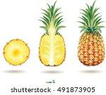 pineapple on a white. vector...   Shutterstock .eps vector #491873905