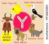 cute children zoo alphabet y... | Shutterstock .eps vector #491882881
