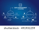 data management platform  dmp ... | Shutterstock . vector #491931259
