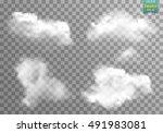 fog or smoke isolated... | Shutterstock .eps vector #491983081