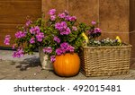 Autumn Pumpkin And Flowers For...