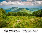 view of old rag mountain from... | Shutterstock . vector #492087637